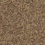 cambria_brownhill_sample